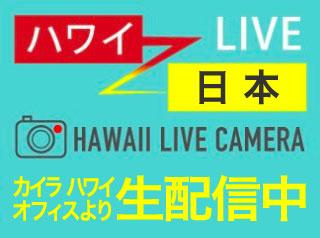 今のハワイを生配信中!HAWAII LIVE CAMERA